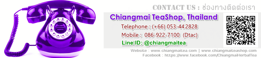 Contact ChiangMai TeaShop Thailand