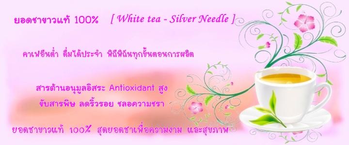 ชาขาว Whitetea - Silver Needle