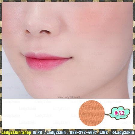 ( 23 )My Palette My blusher