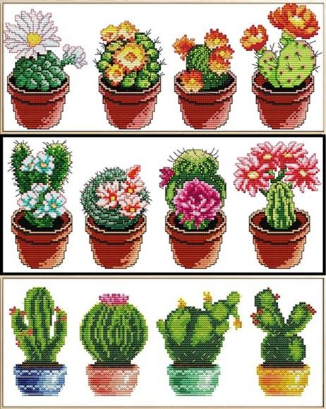 Cactus (เดี่ยว/ชุด)(ไม่พิมพ์/พิมพ์ลาย)