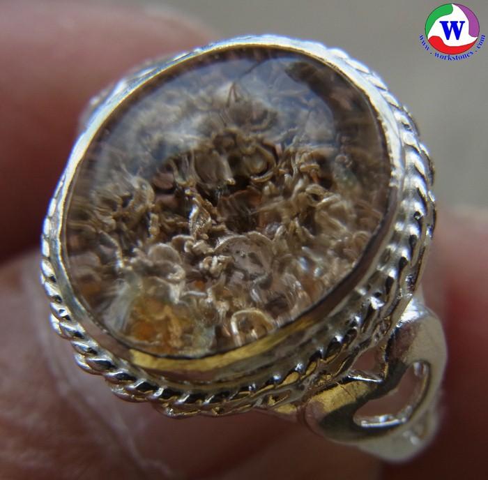 แหวนเงินหญิง เบอร์ 54 แก้วโป่งข่ามนำโชค ชนิดแก้วปวกปะการังสีทองฟู เสริมโชคลาภ ร่ำรวยมั่นคง
