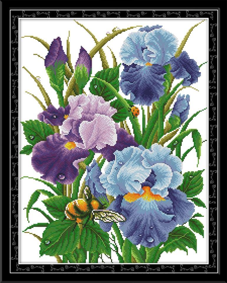 Iris (ไม่พิมพ์/พิมพ์ลาย)