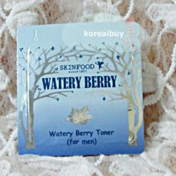 (พร้อมส่่ง) Skinfood Watery Berry Toner for Men (Whitening/Anti-Aging)